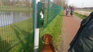 Evaluatie hondenbeleid draagt bij aan leefbaarheid in Noordveen