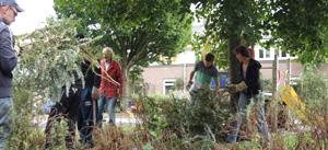 Wijkwethouder Patricia Withagen bezoekt Week van de Wijk 2013