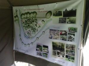 Natuurlijke speeltuin in het Wijnhofpark!