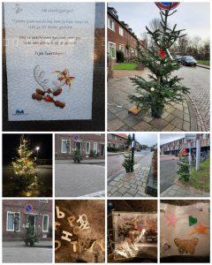 Kerstbomen in het wild in Noordveen