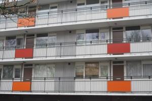 Posters in flats Berkelpark